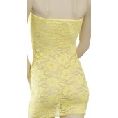 Stretch lace tube dress-D14L