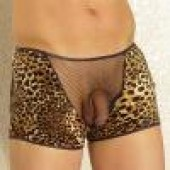 Animal print shorts with fishnet inset